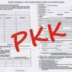PKK on-line